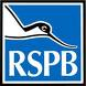 RSPB – Troup Head, Gamrie
